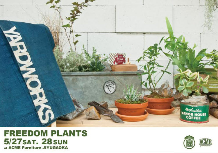 Yard Works×ACME Furniture 「FREEDOM PLANTS」